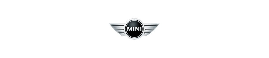 Austauschgetriebe Mini