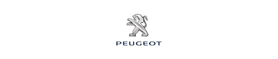 Austauschgetriebe Peugeot