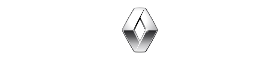 Austauschgetriebe Renault